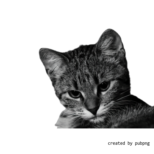 Cat, Small To Mediumsized Cats transparent png image under public domain license